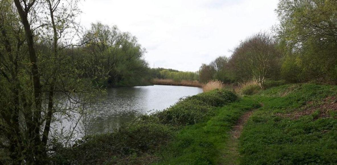 Zuid-West-Vlaamse Trailbende