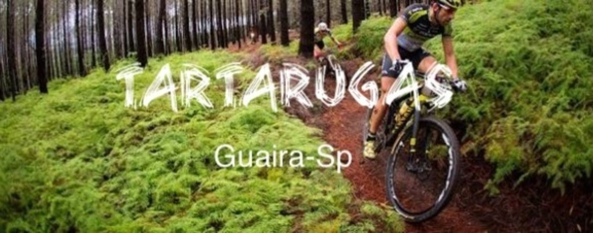 TARTARUGAS  Guaira-SP