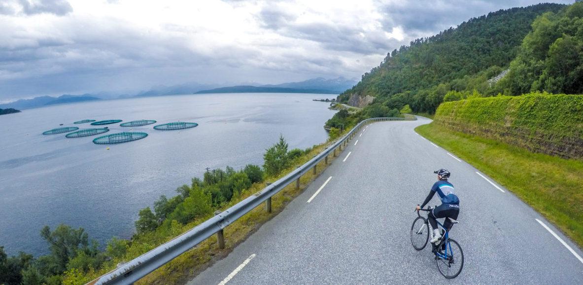 Cyclo Speed Mielec