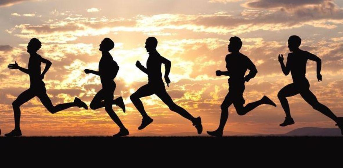 JS Newton Runners