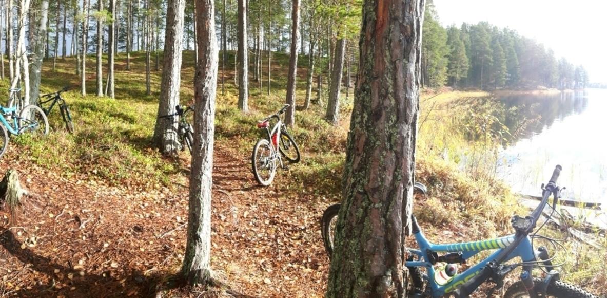 Umeå MTB Mamacitas