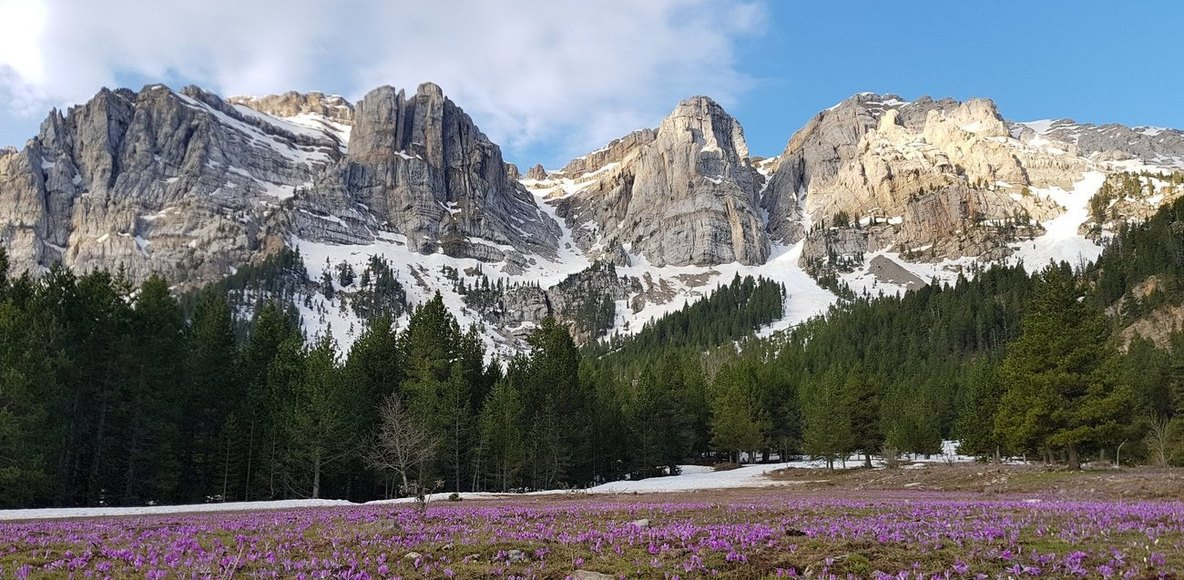 Cerdanya Pirineus