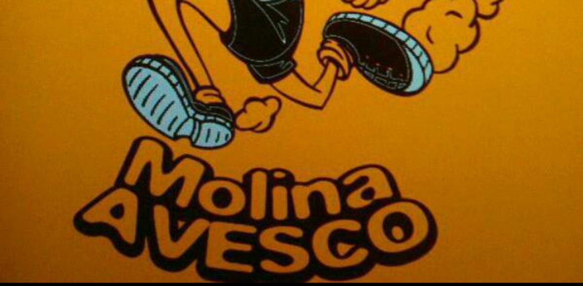 C.A MOLINA AVESCO