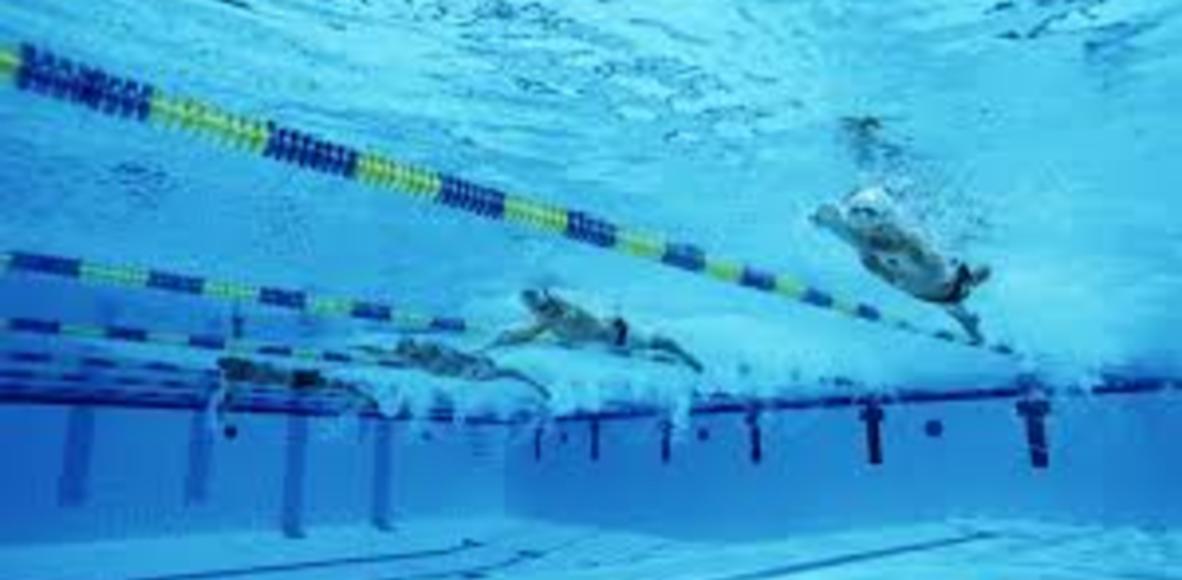 SLB Swimmer Club