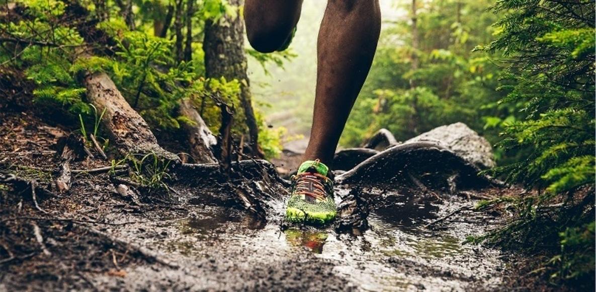 Auburn Trail Runners