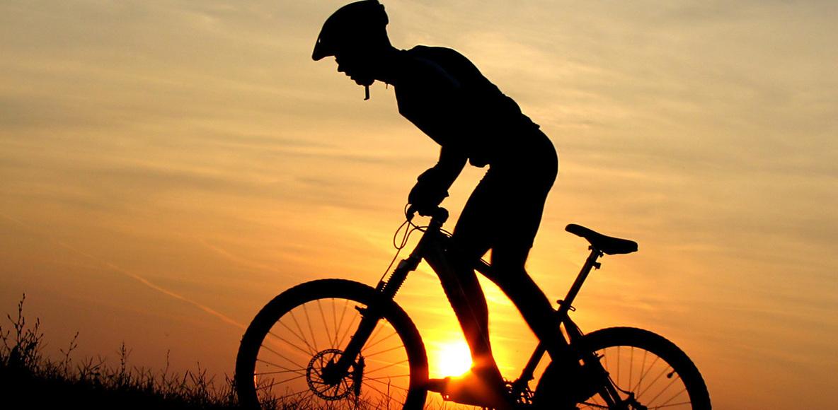 Travel Bikers