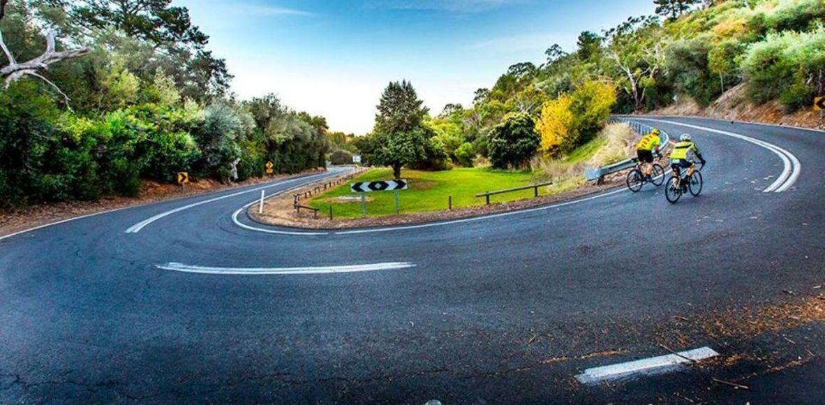 Adelaide Bike Hire - Performance Road Bikes