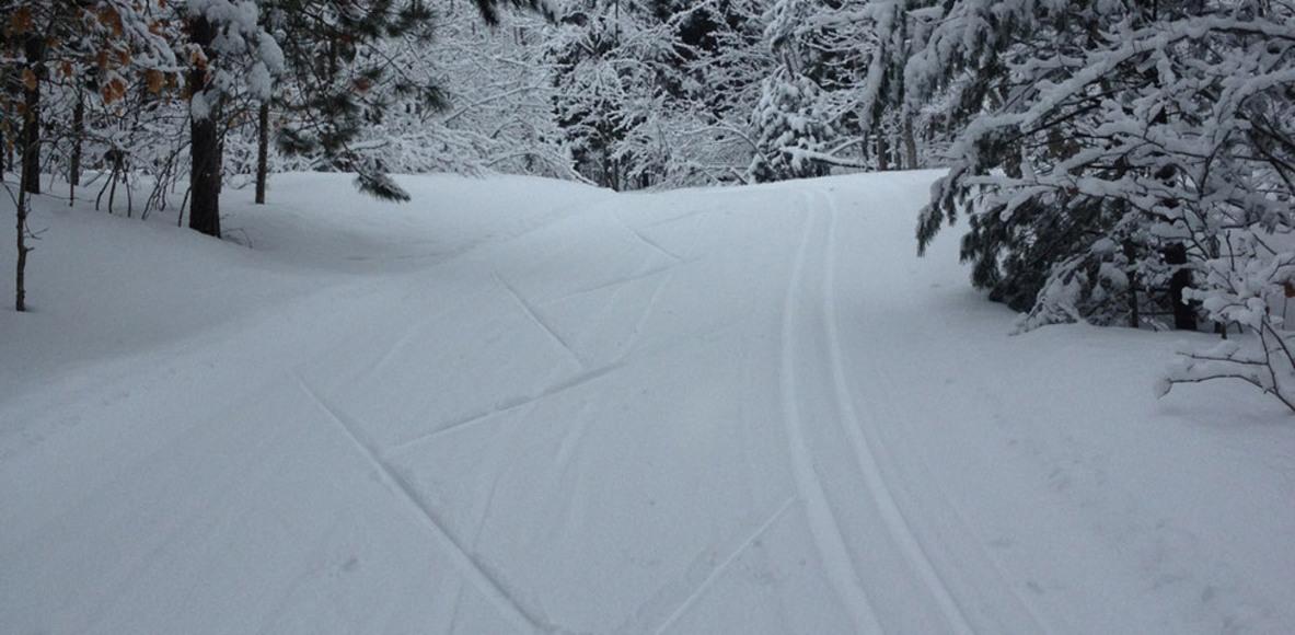 VASA Ski Club