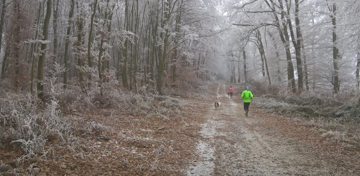 Zala megyei futók