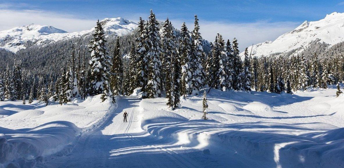 UBC Nordic Skiing