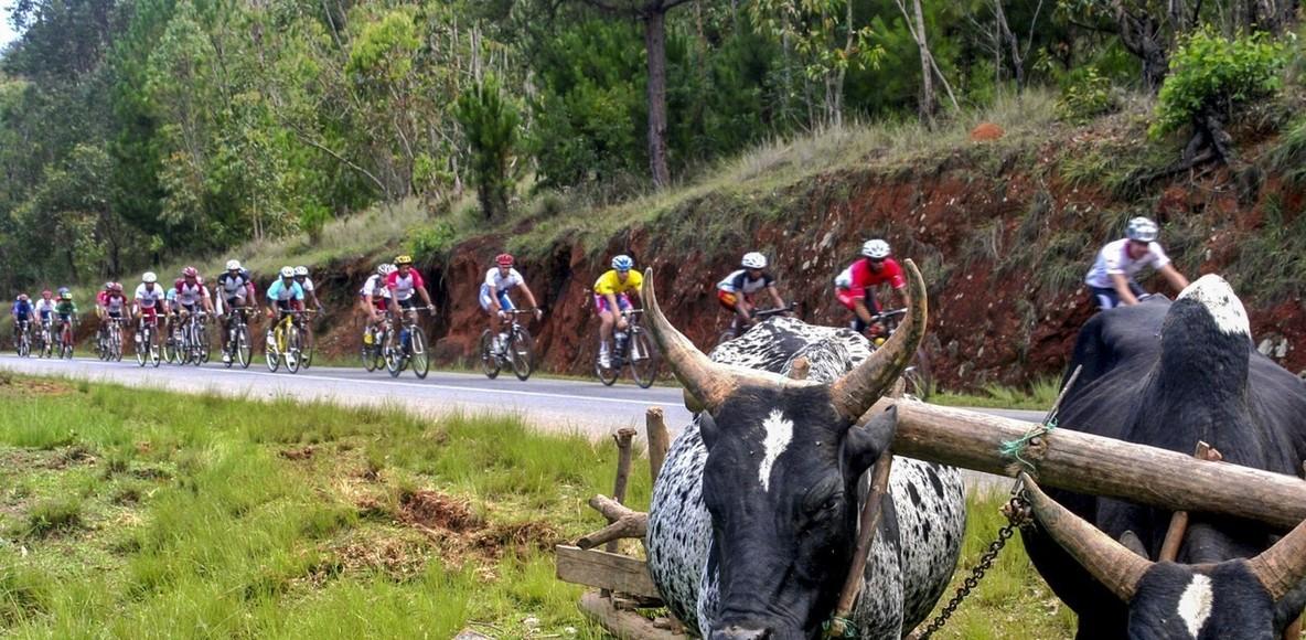 Madagascar Cycling Club (MCC)