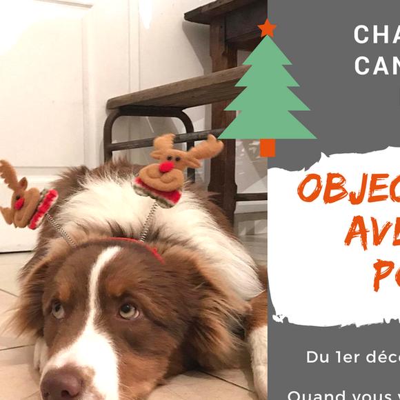 Challenge Canicross Noël