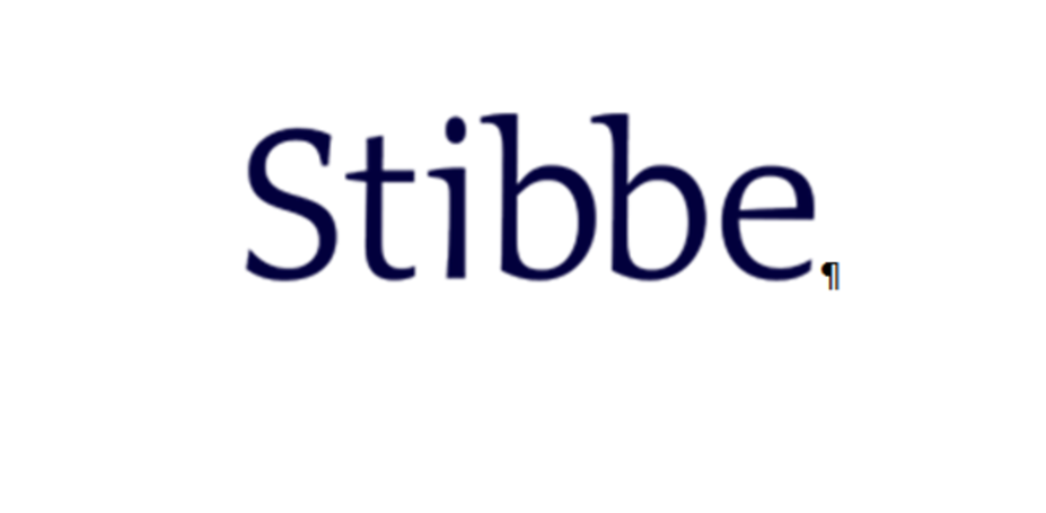 Stibbe Charity500