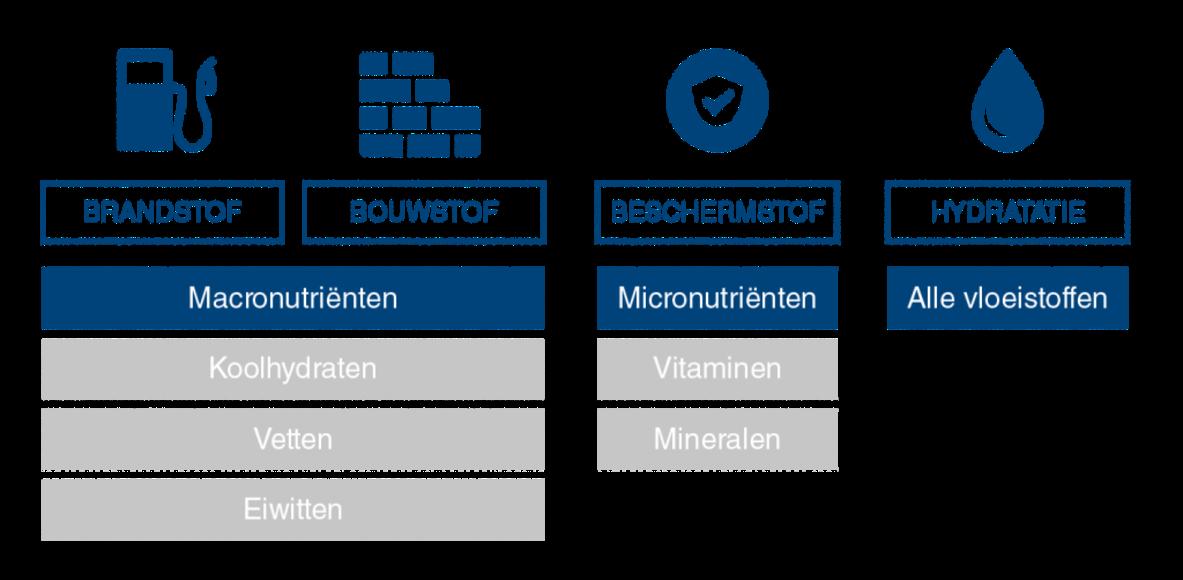 VoedingenSportPrestatie.nl