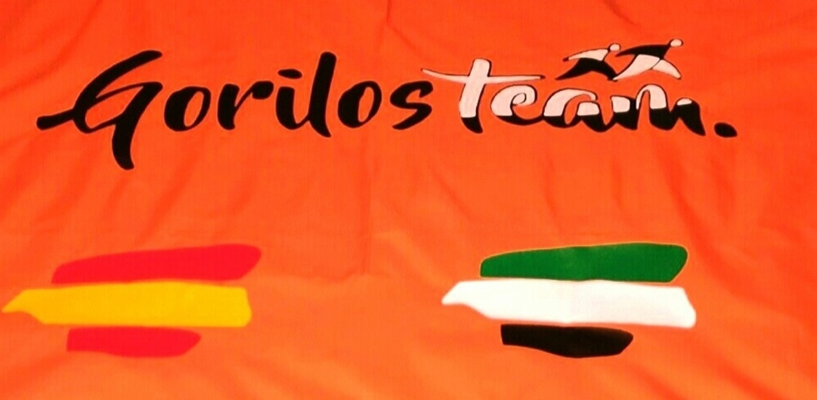 GORILOS TEAM