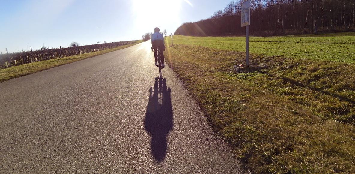 pannonia riders