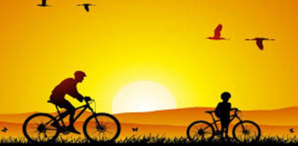 DPC bike
