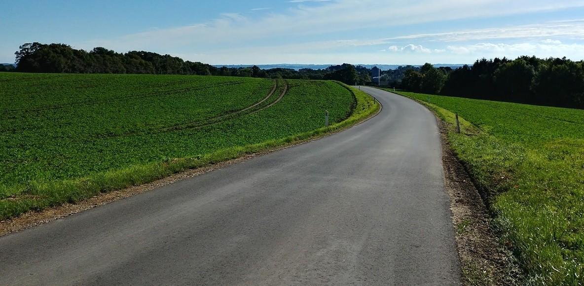 Cykelhingstene