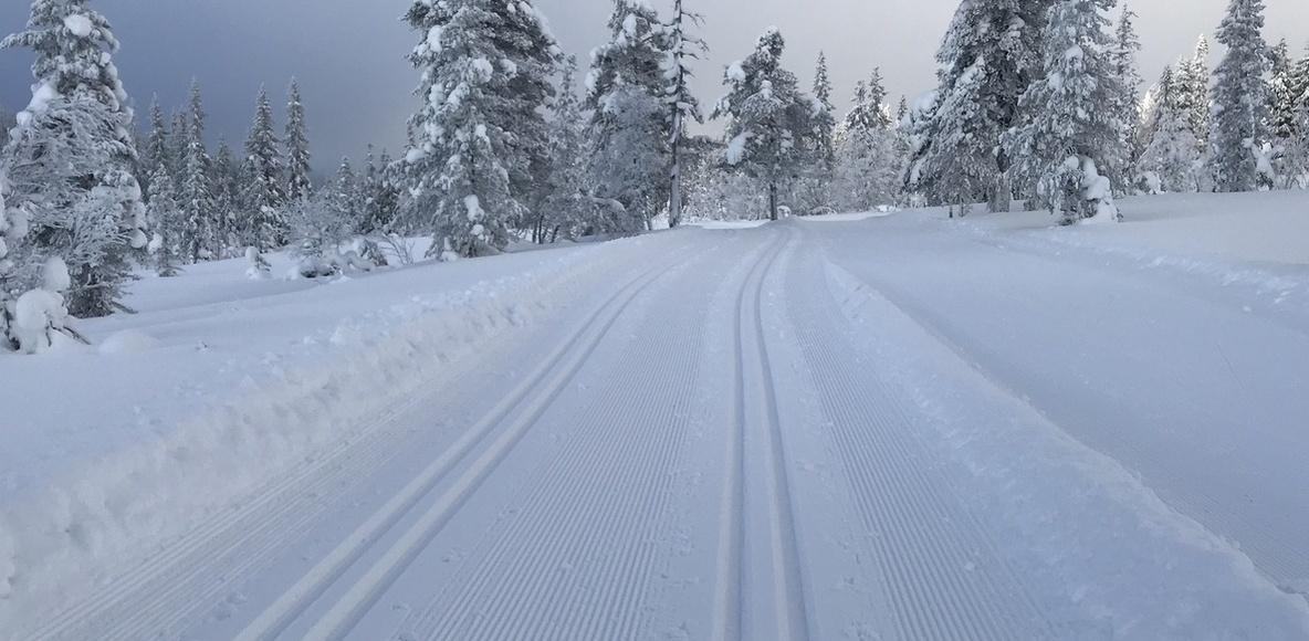 Västerås XC Ski