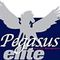 Team Pegasus a.k.a. Pegasus Elite Triathlon Team