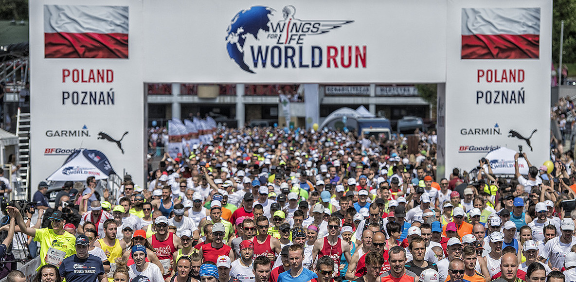 Wings for Life World Run Poland