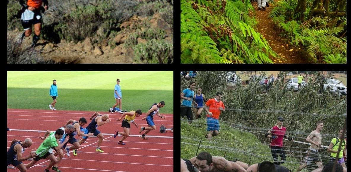 Actividades Deportivas Tenerife