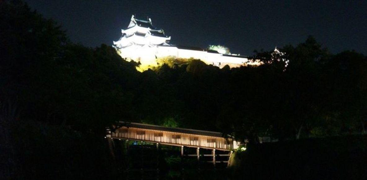 和歌山城周回ランナー