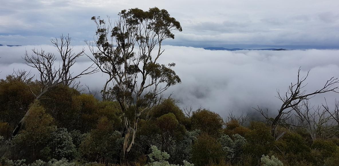 Whitelion 3 Peaks Challenge