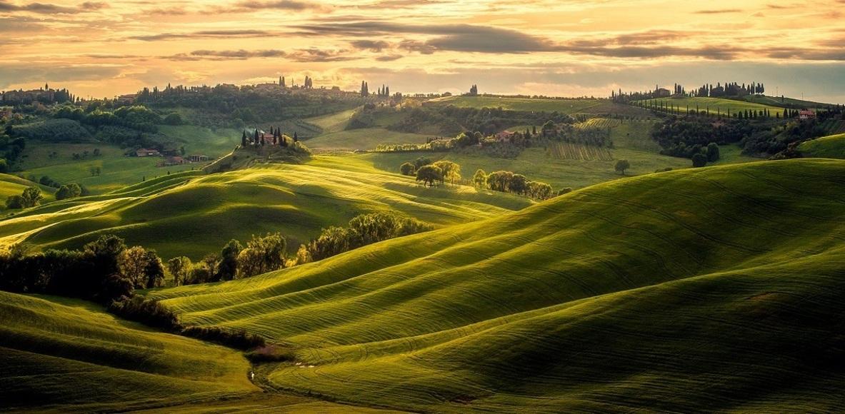 Stambecchi di Toscana