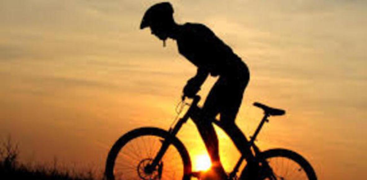 Os Pelegrinos Do Pedal