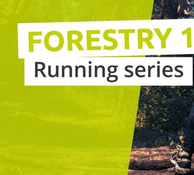 Salcey Forest Runners