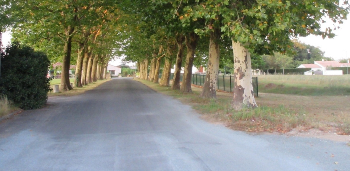 Logis du Breuil Runners