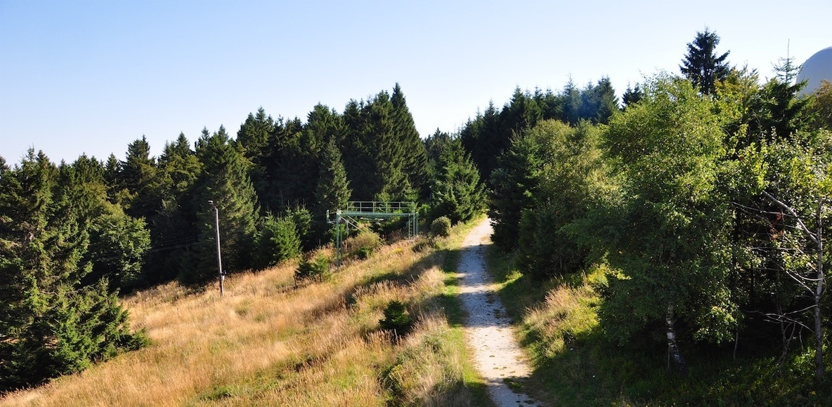 Trailrunning Hunsrück