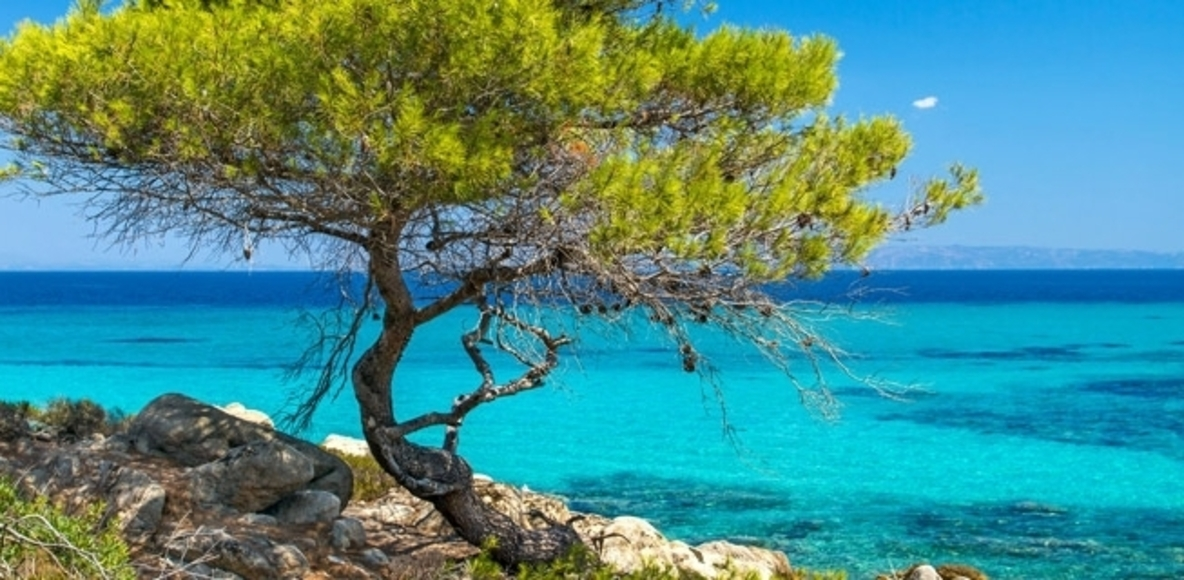 Chalkidiki Runners-Cylists Greece