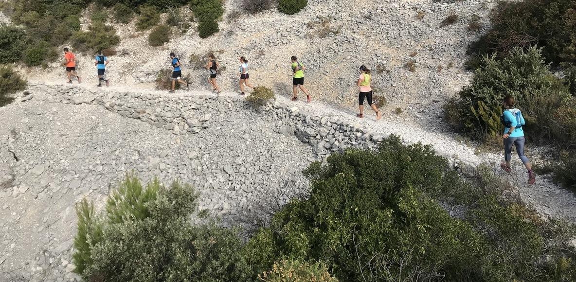 SCO Trail