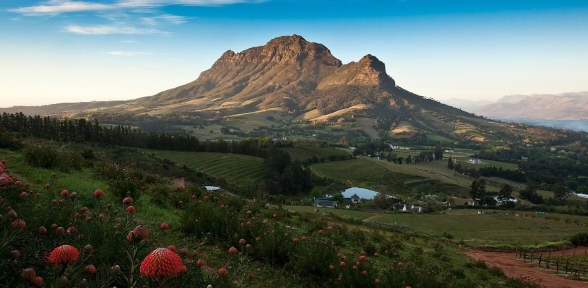 Maxi Race Cape Winelands