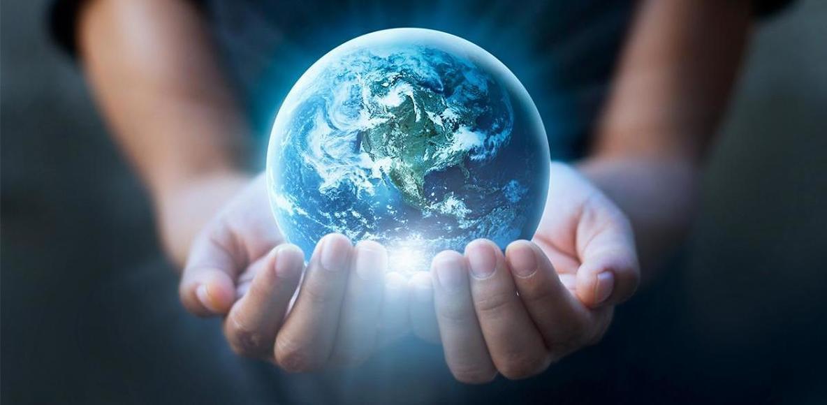 World Climate Movement