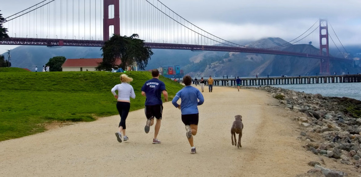 Aussies in San Francisco (Bay Area)
