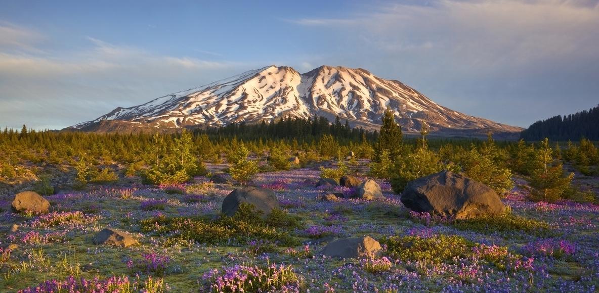Climb 4 Community (Loowit- Mt. St. Helens)