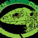 Green Lizard Cycling