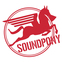 Team Soundpony