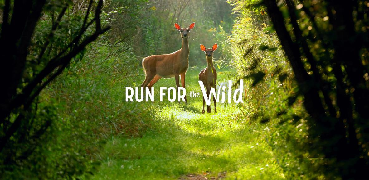 Virginia Wildlife Run Club