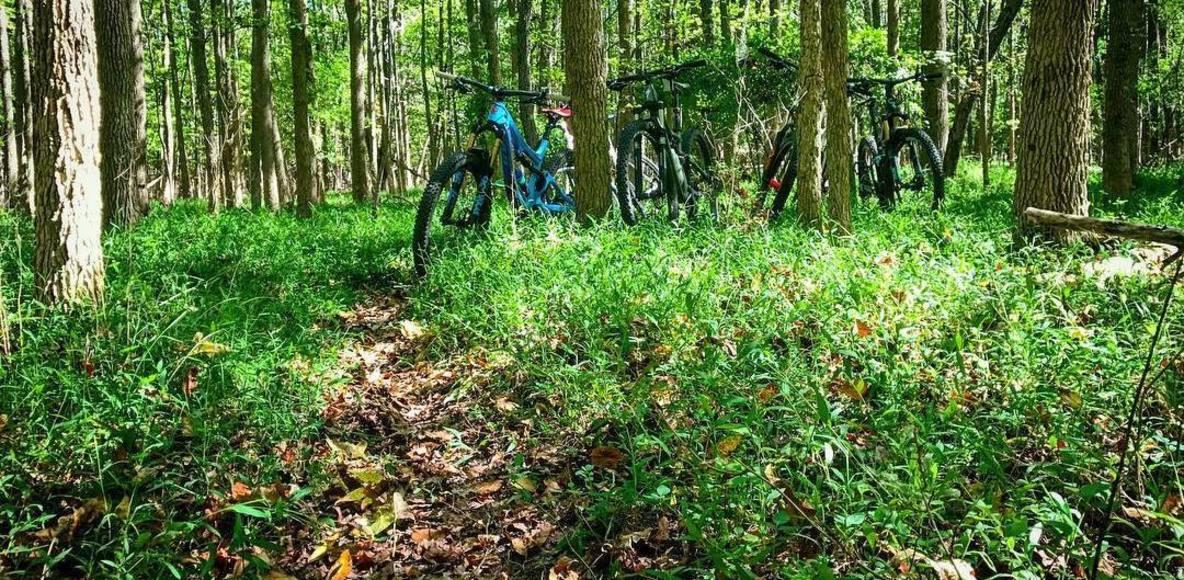 Knapp's Cyclery Club